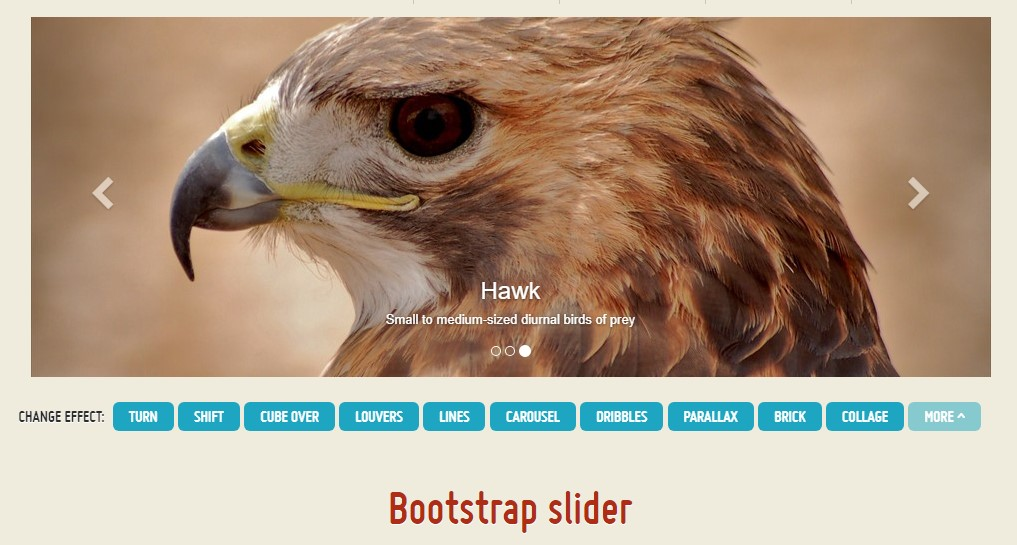 Bootstrap Vertical Slider